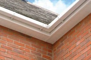 guttering installation repair and cleaning in cork