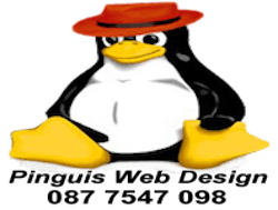 Pinguis Website Design in `cork