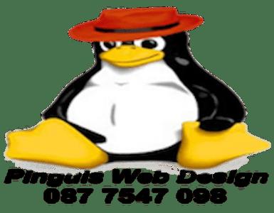 Pinguis Web fast effective affordable website design